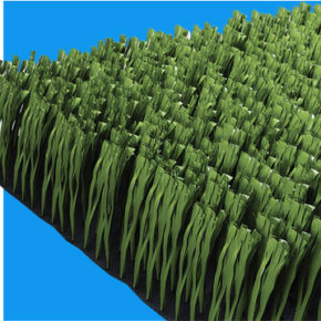 Ecograss