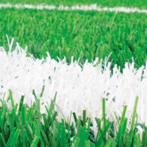 Presença nos grandes Estádios Brasileiros