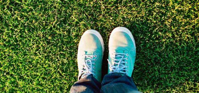 5 vantagens de utilizar agramasintéticapara paisagismo