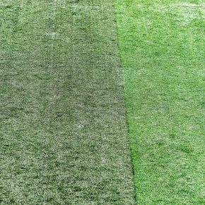 Estádio mais tradicional da Argentina caminha para a modernidade e estuda adotar a Grama Sintética