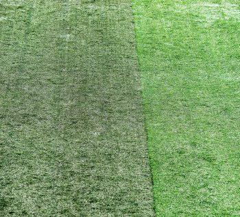 Novo estádio do boca juniors poderá ter grama sintética